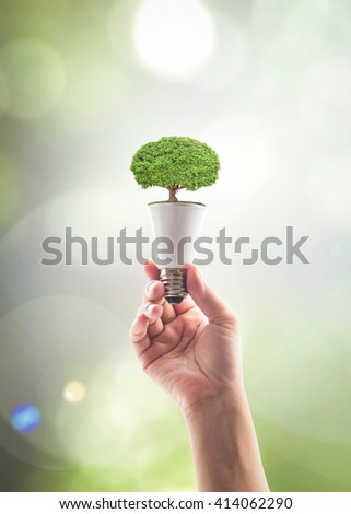 Human person's hand holding LED light emitting diode lightbulb energy saving bulb with tree on top on green background: Saving energy by eco friendly creative innovative technology design concept idea