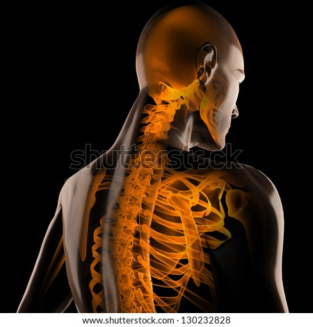 human radiography scan on black - stock photo