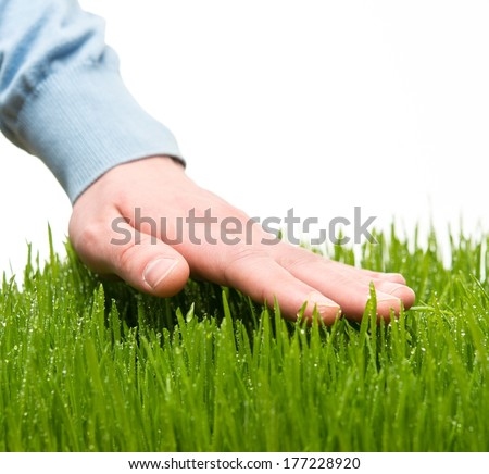 Human's hand touching fresh grass