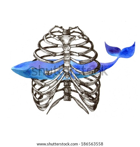 Human skeleton and whale. Raster hand drawn illustration. - stock photo