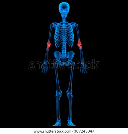 Human Skeleton Bone Joint Pains