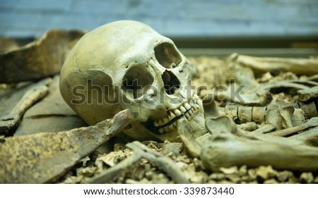 Human skeleton close up detail of the skull laid out in an open grave in a catacomb suitable for horror or Halloween themed backgrounds - stock photo