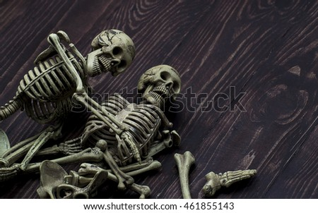 Human Skeleton On wooden background ,Still life