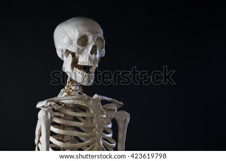Human skeleton, opened mouth, copy space
