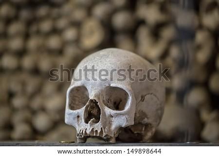stock-photo-human-skull-149898644.jpg