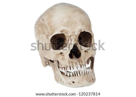 Human skull close-up isolated on white background - stock photo