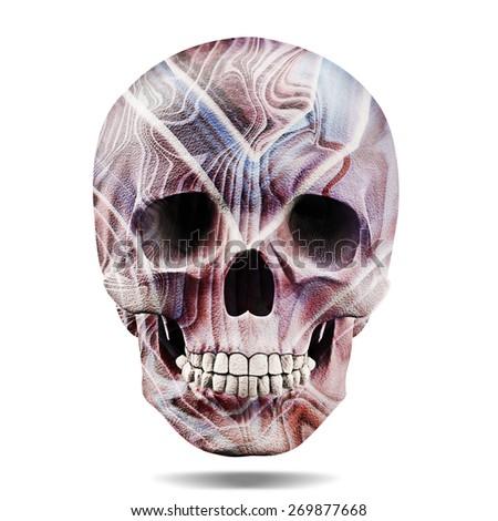 drawing human skull illustration on white stock illustration, Skeleton