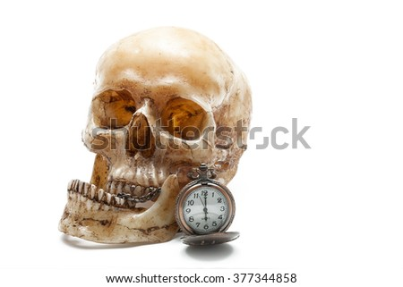 Human skull concept on isolated white background - stock photo
