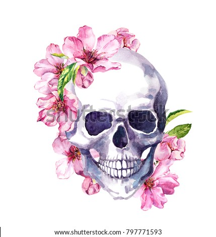 Human skull pink cherry blossom spring stock illustration 797771593 human skull in pink cherry blossom spring flowers of sakura watercolor mightylinksfo