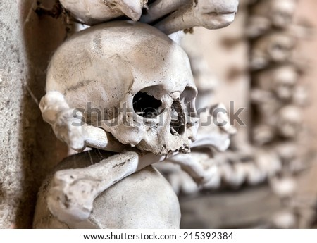 Human skull in the basement vault, lined one over the other. Symbol pirate flag - stock photo
