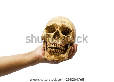 Human skull in the hand on isolated white background - stock photo