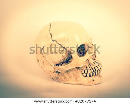 Human skull in vintage tone. - stock photo