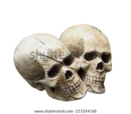 Human skull model isolated on white background, clipping path. - stock photo