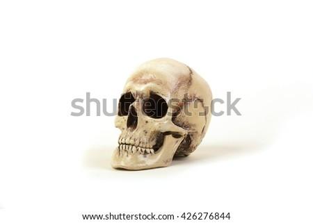 Human skull on a white background - stock photo