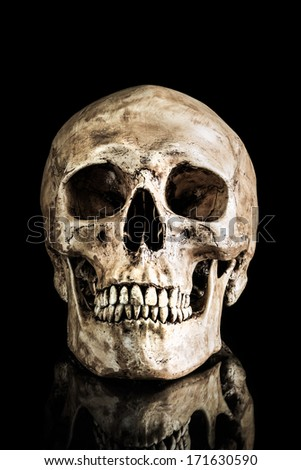 Human skull on isolate black background with reflection - stock photo