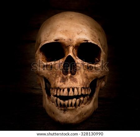 Human skull on wood background - stock photo