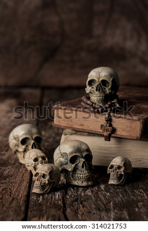 human skull still life background