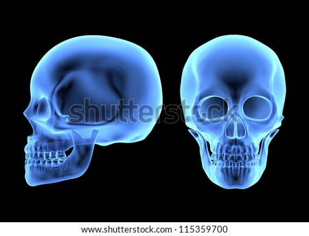 Human Skulls isolated on black. X-ray effect - stock photo