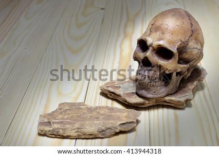 human skulls on stone  - stock photo