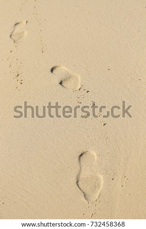 Human steps in shoes on a sandy beach ground, coastline, man track