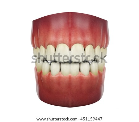 Human teeth opening isolated on white background, 3D rendering