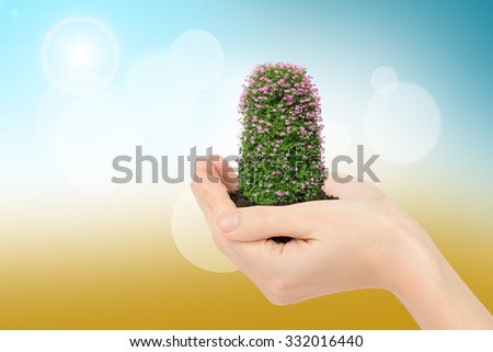 Humans hands holding flowers with ground on colorful background