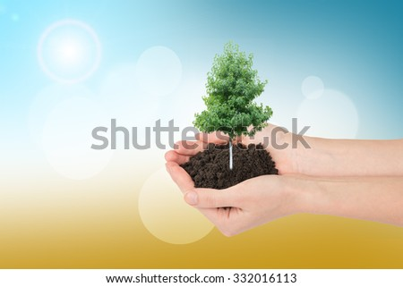 Humans hands holding tree with ground on colorful background