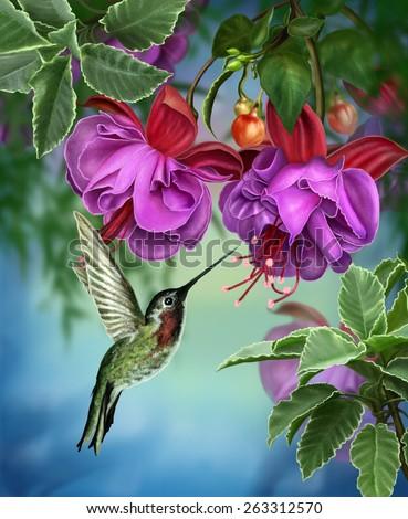 Hummingbirds and branch fuchsia - stock photo