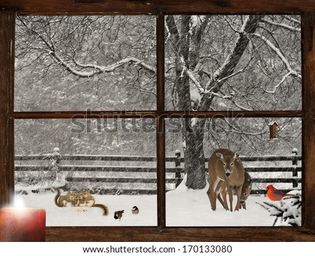 Humorous image of a mother, and baby deer, a bright red Cardinal, and four baby  squirrels and two cute chickadees in a snowstorm, as seen through a grunge farm house window.  - stock photo