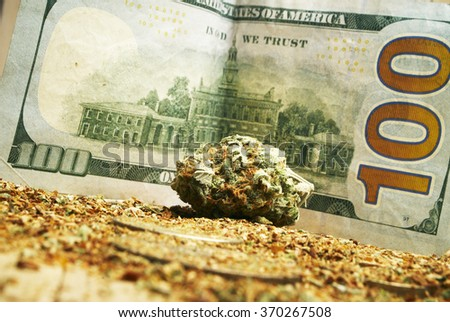 hundred dollar bill and marijuana bud  - stock photo
