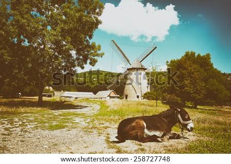 Hungarian countryside - stock photo