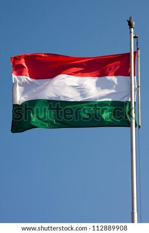 hungarian flag - stock photo
