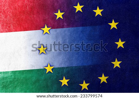 Hungary and European Union Flag painted on leather texture - stock photo