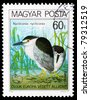 HUNGARY - CIRCA 1980: A post stamp printed in Hungary shows image Nycticorax, circa 1980 - stock photo