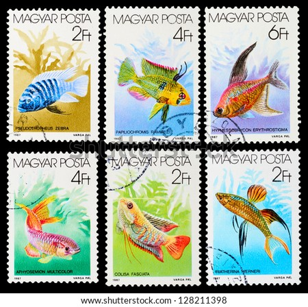 HUNGARY - CIRCA 1987: A set of postage stamps printed in HUNGARY shows aquarium fish, series, circa 1987