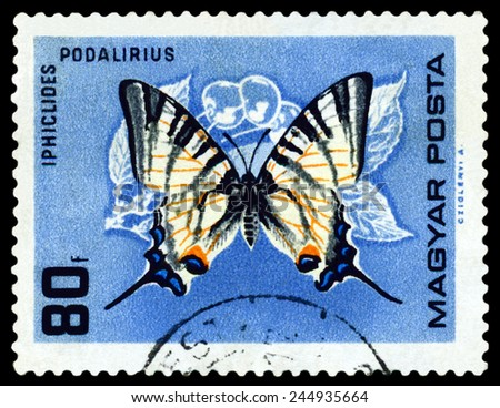 HUNGARY - CIRCA 1966: A stamp printed in Hungary  shows butterfly Iphiclides podalirius, circa 1966. - stock photo