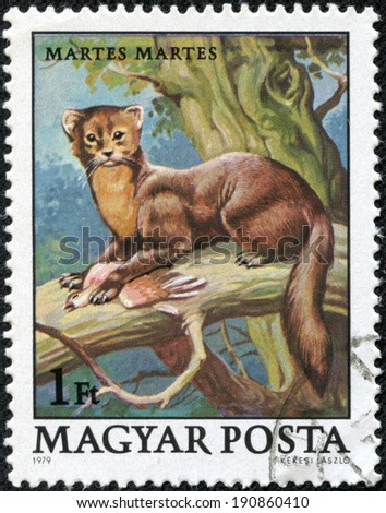 "HUNGARY - CIRCA 1979: A stamp printed in Hungary shows European Pine Marten (Martes martes), with the same inscriptions, from the series ""Wildlife Protection"", circa 1979. - stock photo"