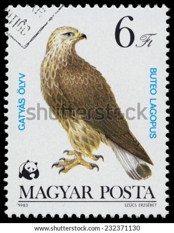 "HUNGARY - CIRCA 1983: A stamp printed in Hungary shows rough-legged buzzard (Buteo lagopus),from the series ""Bird of prey"", circa 1983  - stock photo"