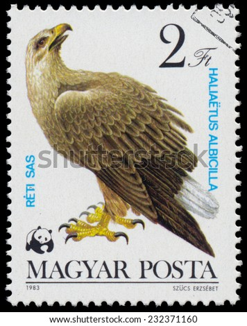"""HUNGARY - CIRCA 1983: A stamp printed in Hungary shows White-tailed Eagle (Haliaeetus albicilla), from the series """"Bird of prey"""", circa 1983  - stock photo"""