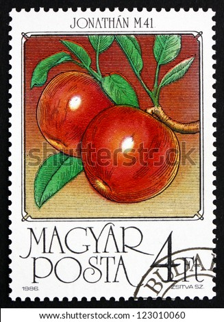 HUNGARY - CIRCA 1986: A stamp printed in the Hungary shows Apples, Malus Domestica, Fruit of the Apple Tree, circa 1986 - stock photo