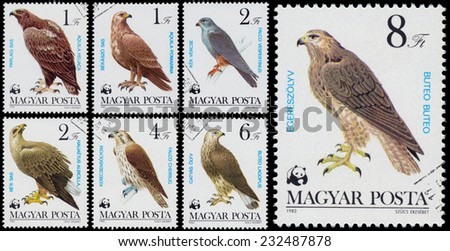 """HUNGARY - CIRCA 1983: Set of stamps printed in Hungary shows the comlete series """"Bird of prey"""", circa 1983  - stock photo"""