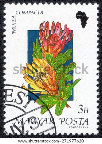"HUNGARY - CIRCA 1990: Stamp printed in Hungary, shows , from the series ""African Flowers"", circa 1990   - stock photo"