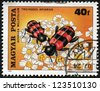 HUNGARY - CIRCA 1980: The postal stamp printed in HUNGARY shows a Beetle, Trichodes apiarius, on Yarrow, Achillea millefolium. Beetle consumes nectar, series, circa 1980 - stock photo
