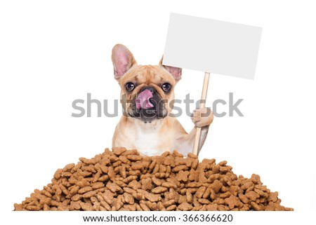 hungry bulldog dog behind a big mound or cluster of food with empty blank blackboard  , isolated on white background - stock photo
