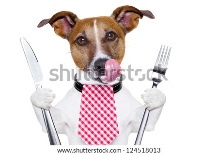hungry dog with knife and fork  for dinner