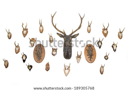 Hunter's house. Wall of trophies. - stock photo