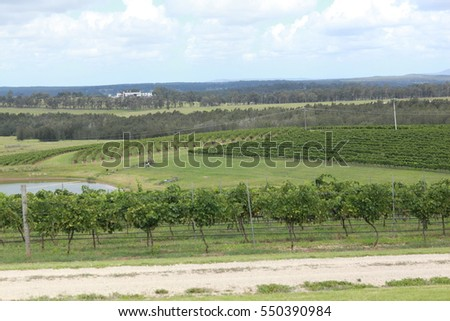 Hunter Valley, NSW Australia