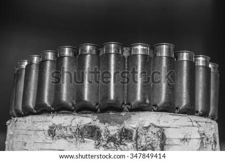 Hunting ammunitions - stock photo