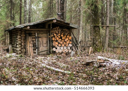 Hunting Lodge In The Forest