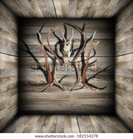 hunting trophies ( roe and red deer ) on abstract backdrop wooden room - stock photo